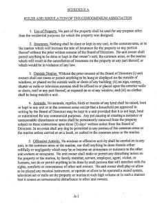 CLCA-Rules-and-Regulations-1